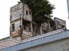 Einen Baum auf einem Haus habe ich noch nie gesehen…